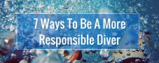 7 Ways To Be A More Responsible Diver | GVI