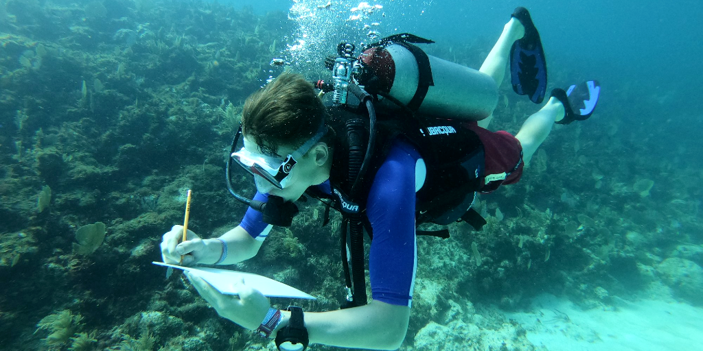 A GVI volunteer takes note of the progress made on the marine ecosystem restoration project.