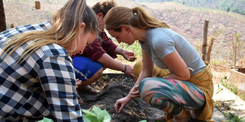 GVI volunteers plant seeds as part of an environmental initiative.