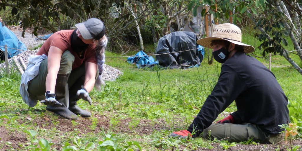 Volunteering abroad allows you to travel with a purpose and reduce your own ecological footprint.