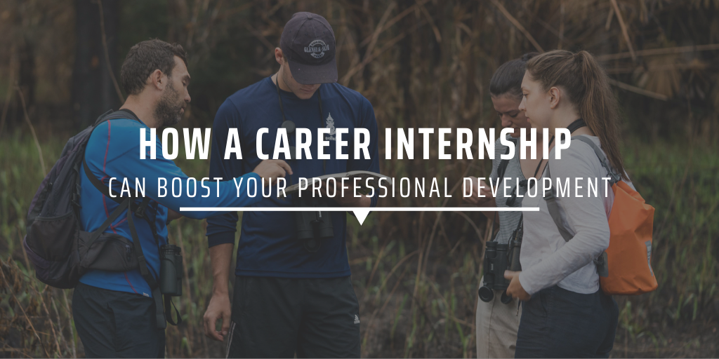 How a career internship can boost your professional development