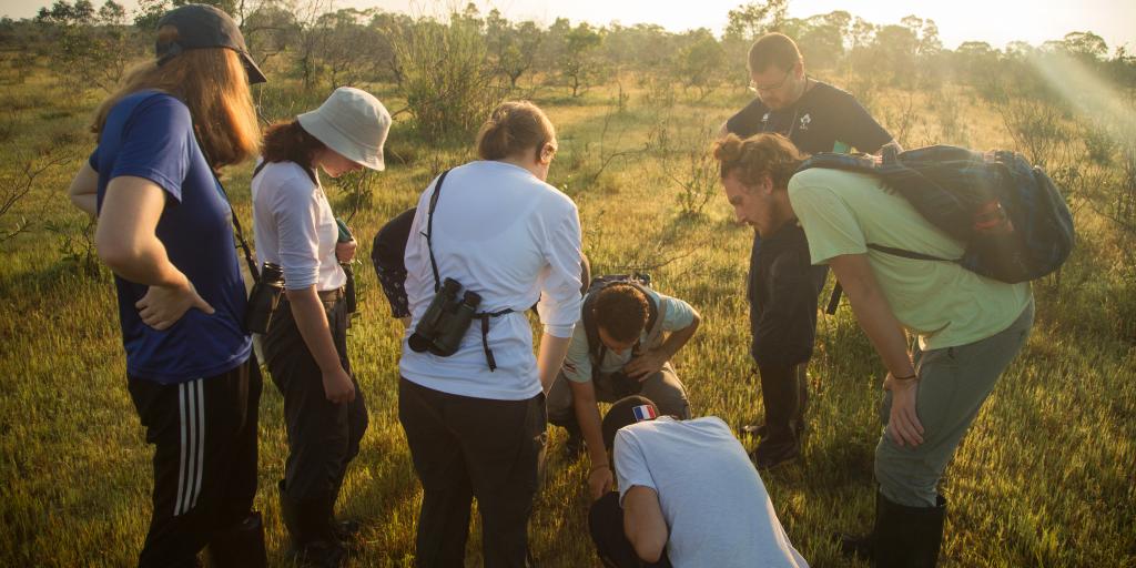GVI volunteers monitor the environment.