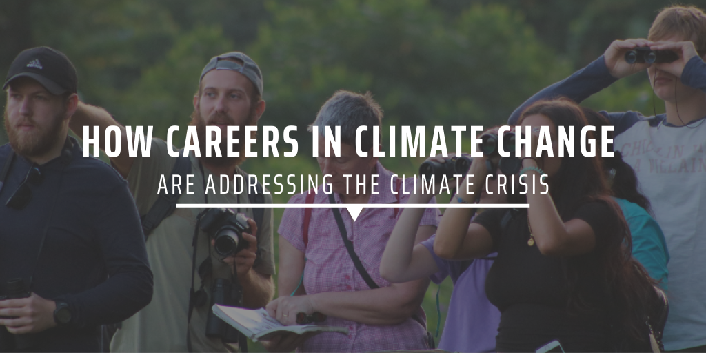 How careers in climate change are addressing the climate crisis
