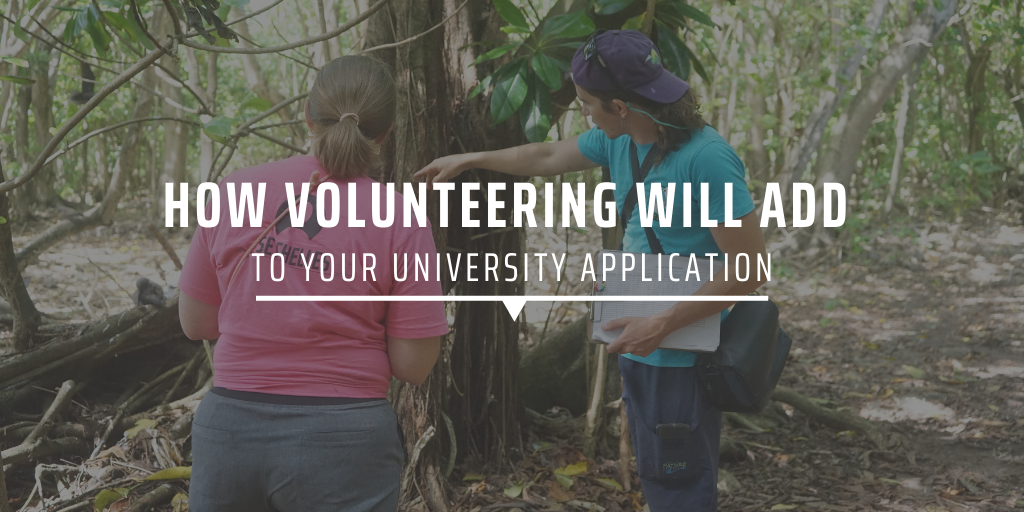 How volunteering will add to your university application
