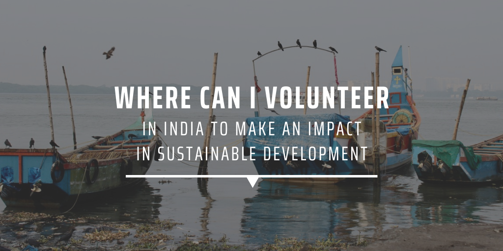 Where can I volunteer in India to make an impact in sustainable development?