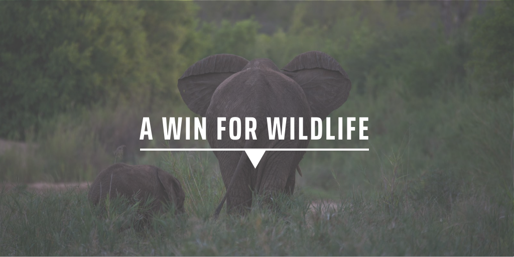 A win for wildlife
