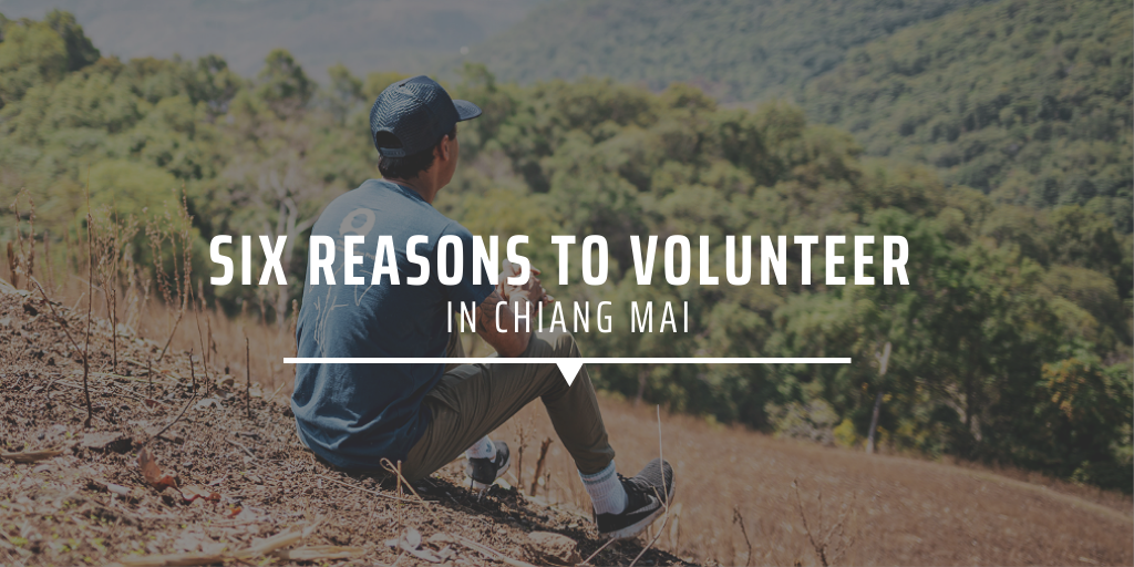 Six reasons to volunteer in Chiang Mai