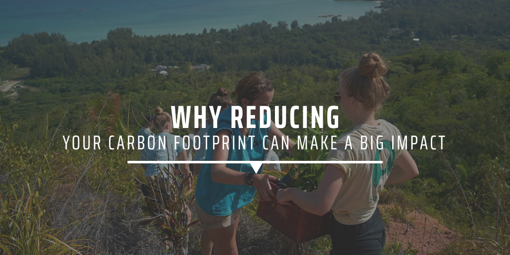 Why reducing your carbon footprint can make a big impact