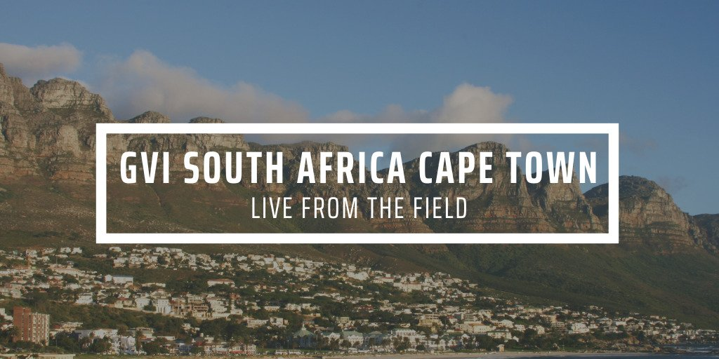 How we support your Cape Town experience