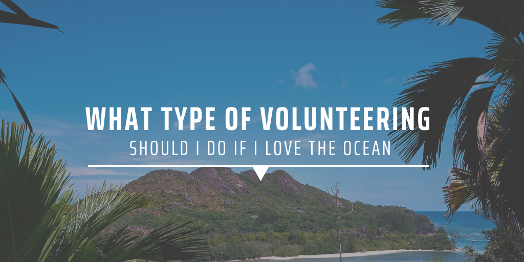 What type of volunteering should I do if I love the ocean