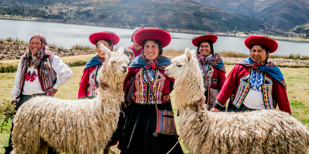 When you choose volunteering in Peru you're likely to see your fair share of llamas