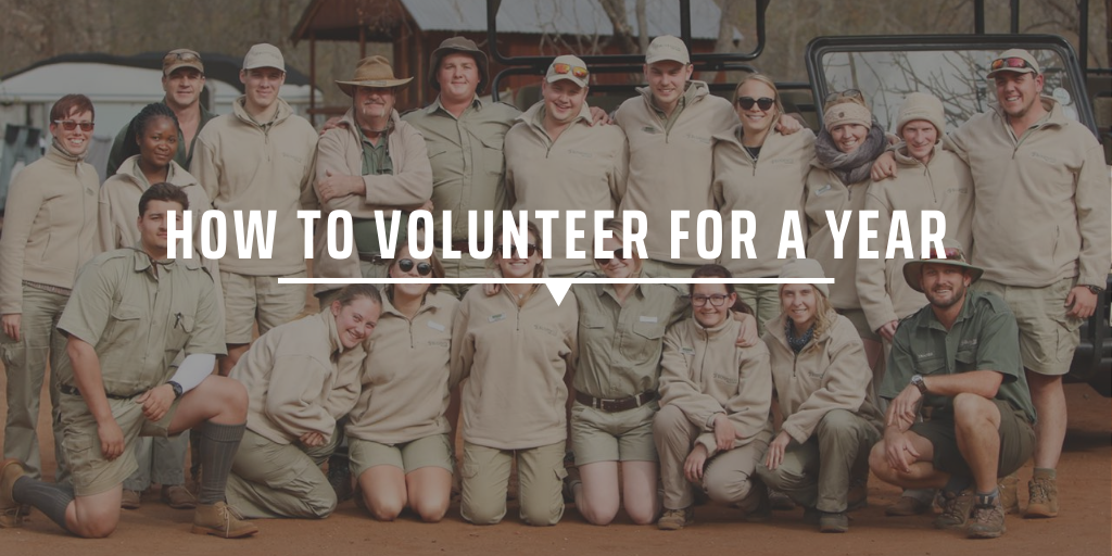 How to volunteer for a year